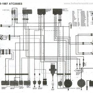 1998 Honda Fourtrax 300 Wiring Diagram - Honda 300 Fourtrax Wiring Diagram 6e