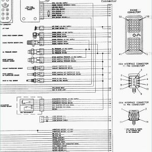 2001 Dodge Dakota Trailer Wiring Diagram - 1995 Dodge Ram 1500 Transmission Wiring Diagram Refrence 2001 Dodge Ram 1500 Trailer Wiring Diagram Save 14h