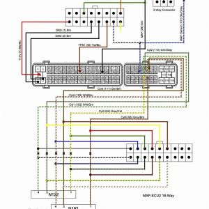 2002 Honda Accord Wiring Diagram - Wiring Diagram 2000 toyota Sienna Fuse Box Diagram Honda Accord Rh Grooveguard Co 2g