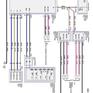 2003 ford Escape Radio Wiring Diagram - 2003 ford Focus Radio Wiring Diagram Floralfrocks and Autoctono 2003 ford Taurus Wiring Diagram 13q