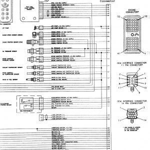 24 Valve Cummins Fuel Pump Wiring Diagram | Free Wiring ...