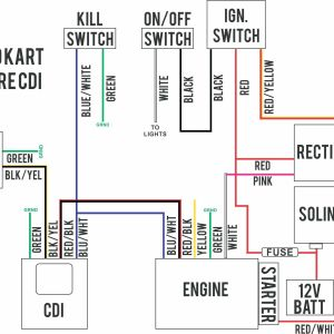 4 Prong Trailer Wiring Diagram - 5 Wire Trailer Wiring Diagram Elegant Excellent 4 Pin Cdi and – 4 Pin Wiring Diagram 10n