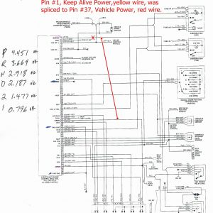 4l60e Neutral Safety Switch Wiring Diagram - Emergency Relay Wiring Diagram Valid Awesome 4l60e Neutral Safety Switch Wiring 11m