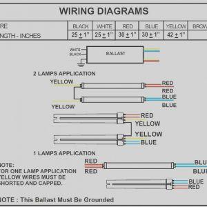 Allanson Ballast Wiring Diagram - Unique 2 Lamp Ballast Wiring Diagram T5ho Diagrams Schematics Rh Justsayessto Me Philips Advance Ballast Wiring 9e