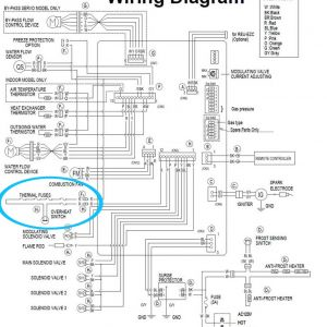 Ao Smith Water Heater thermostat Wiring Diagram - Check the Electric Troubleshoot From 2008 Pdf Tankless Gas Water Heater 11q