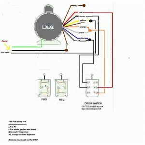 Baldor Single Phase Motor Wiring Diagram - Weg Motor Capacitor Wiring Diagrams Schematics and Baldor Diagram In 15s