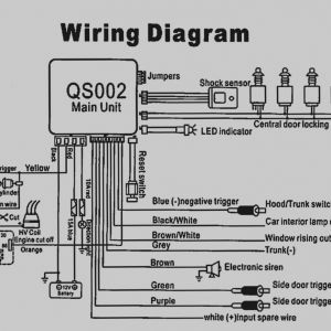 Car Alarm Wiring Diagram - 25 Amazing Car Alarm Wiring Diagrams Hornet Diagram Best Wire Gallery 18b