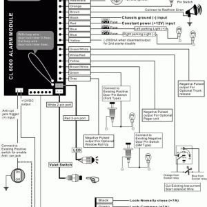 Carvox Alarm Wiring Diagram - Car Alarm Wiring Diagrams Carbine Alarms Tm Wire Center \u2022 Diagrams Carbine Alarms Tm Images 16q