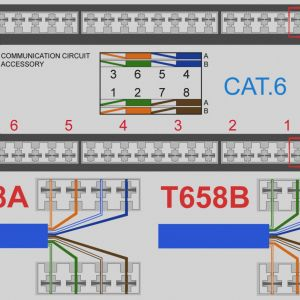 Cat6 Punch Down Wiring Diagram - Cat5 Phone Line Wiring Diagram Electrical Drawing Wiring Diagram • Networking 101 How to Punch 7d