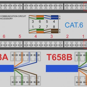 Cat6 socket Wiring Diagram - Cat 6 Wiring Diagram Wall Jack Download Beautiful Surface Mount Data Jack Wiring Diagram Cat 8a