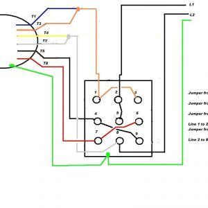 Century 2 Speed Motor Wiring Diagram - Leeson Electric Motor Wiring Diagram for Intelligent Ac with Cool Rh Natebird Me 2g