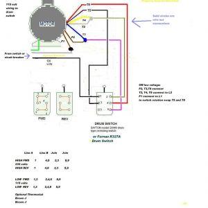 Century Ac Motor Wiring Diagram 115 230 Volts - Dayton Motor Wiring solutions 17 0 50 Best Pics Century Ac Motor Wiring Diagram 115 115 230 Volt 2l