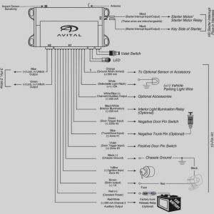 Century Dl1056 Wiring Diagram - Century Dl1056 Wiring Diagram Collection Labeled Avital 3100 Car Alarm Wiring Diagram Avital 3100 Wiring 9l