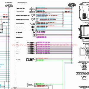 Cummins M11 Ecm Wiring Diagram - Amazing Cummins Ecm Wiring Diagram Inspiration Electrical Circuit 11p