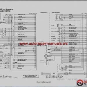Cummins M11 Ecm Wiring Diagram - New N14 Celect Wiring Diagram Cummins Engine Plus Wiring 19a