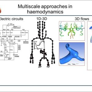 Delco 10dn Wiring Diagram - Delco 10dn Wiring Diagram Diagram Of An Electromagnet Download Diagram An Electromagnet Beautiful Veins Diagram 4q