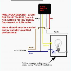 Dual Lite Inverter Wiring Diagram - Wiring Diagram Fluorescent Light Fitting Inspirationa Double Light Switch Wiring Diagram Australia New Light Fitting 1s