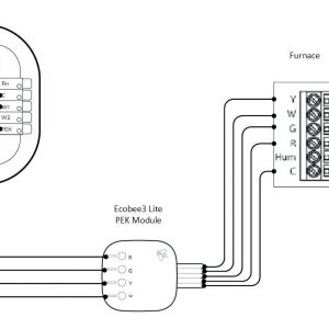Ecobee4 Wiring Diagram - Ecobee4 Wiring Diagram Best Cute Humidifier Aprilaire 600 Wiring Diagram Contemporary 15d