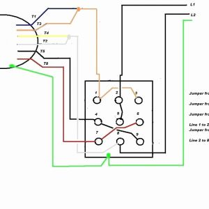 electric motor wiring diagram 220 to 110