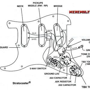 Fender Stratocaster Wiring Diagram - Wiring Diagram for Fender Stratocaster 5 Way Switch Best Wiring Diagram for Fender 5 Way Switch 10c