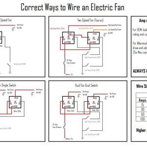 Flex A Lite Fan Controller Wiring Diagram - Flex A Lite Electric Fan Wiring Diagram Mihella Me In for 20g