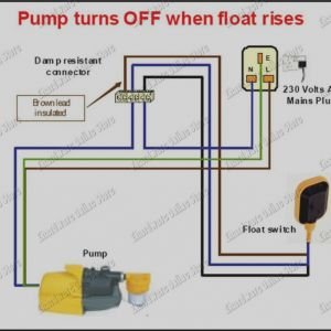 Float Level Switch Wiring Diagram - Float Level Switch Wiring Diagram 13n