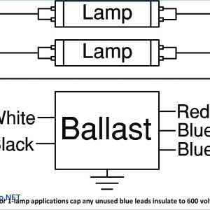 Fluorescent Ballast Wiring Schematic - 2 Lamp Ballast Wiring Diagram Unique 7g