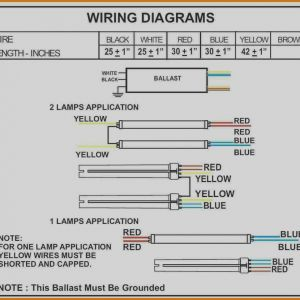 Fulham Wh2 120 C Wiring Diagram - Images Fulham Workhorse Wh1 120 L Wiring Diagram Cute Ballast Rh Chromatex Me 4 Lamp Ballast 11t