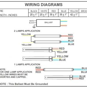 Fulham Workhorse Ballast Wiring Diagram - Fulham Workhorse Ballast Wiring Diagram Collection 4 Lamp T5 Ballast Wiring Diagram B2network Co In 1s