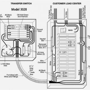 Generac 6333 Wiring Diagram - Reliance Generator Transfer Switch Wiring Diagram Amazon Generac 6333 60 Amp Single Load Double Pole 12l