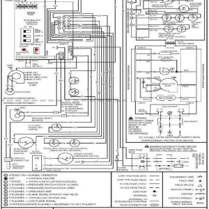 Goodman Air Conditioning Wiring Diagram - Goodman Ac Wiring Unique Diagram Image Inside 11s