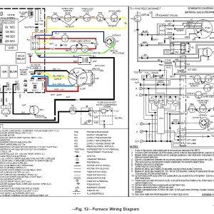 Goodman Defrost Board Wiring Diagram - Carrier Board Wiring Diagram Plete Wiring Diagrams U2022 Rh Brutallyhonest Co Carrier Heat Pump Wiring Diagram 3k