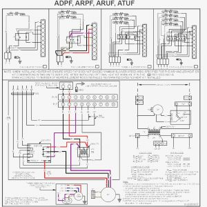 Goodman Furnace Wiring Diagram - Goodman Furnace Wiring Diagram Blurts Me within 18e