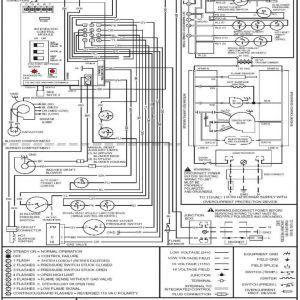 Goodman Package Unit Wiring Diagram - Goodman Manufacturing Wiring Diagrams thermostat Diagram Picturesque Rh Chromatex Me Goodman Package Unit Wiring Diagram Goodman Heat Pump Wiring Diagram 14g