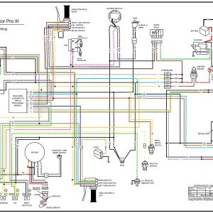 Harley Sportster Wiring Diagram - Badlands Turn Signal Module Wiring Diagram Collection Free Harley Davidson Wiring Diagrams Best Harley Davidson 6c