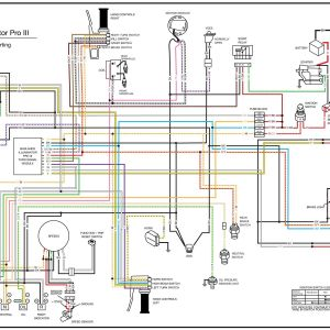 Harley Turn Signal Wiring Diagram - Harley Turn Signal Wiring Diagram Inspirational Magnificent Harley 16b