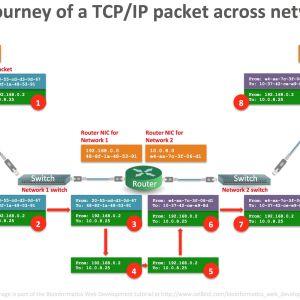 Home Network Wiring Diagram - Wiring Diagram Home Networking Valid Home Network Diagram Download 1 3 Networking Basics – Bioinformatics 3m