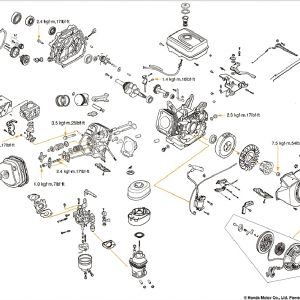 Honda Gx160 Electric Start Wiring Diagram - Honda Gx160 Parts Diagram Unique Wiring the 25 Hp Kohler 24 Great Honda Gx340 Electric 2g