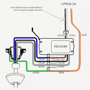 Hunter Ceiling Fan Wiring Diagram with Remote Control - Unique Hampton Bay Ceiling Fan Wiring Diagram with Remote Hunter Www Mesmerizing Diagrams 5o