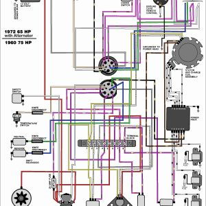Johnson Outboard Ignition Switch Wiring Diagram - Wiring Diagram for Outboard Ignition Switch Best Evinrude Ignition Switch Wiring Diagram Unique Johnson Outboard 15s