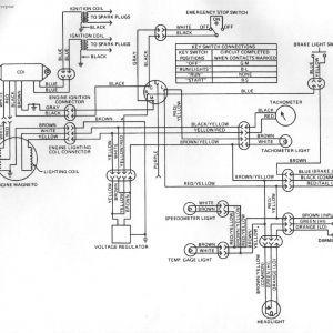 Kawasaki Bayou 220 Wiring Schematic - Wiring Diagram for A Kawasaki Bayou 220 Valid Wiring Diagram for Kawasaki Bayou 300 Best Wiring 1g