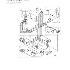 Mercruiser 4.3 Wiring Diagram - 3 0 L Mercruiser Engine Diagram Lovely Mercruiser Alternator Wiring Diagram Fitfathers 17j