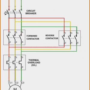 Motor Starter Wiring Diagram Start Stop - 5 3 Phase Contactor Wiring Diagram Start Stop Relay Cable New for Bright Reversing 14r