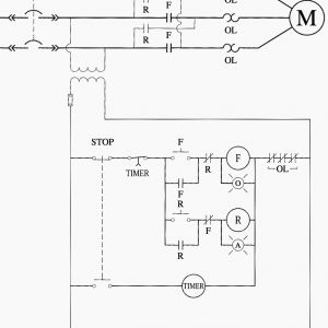 Motor Starter Wiring Diagram Start Stop - Relay Ladder Wiring Diagram Inspirationa Motor Starter Wiring Diagram Start Stop 19q