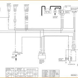 Pit Bike Wiring Diagram Electric Start - Contemporary Chinese Pit Bike Wiring Diagram Gift Electrical 9q
