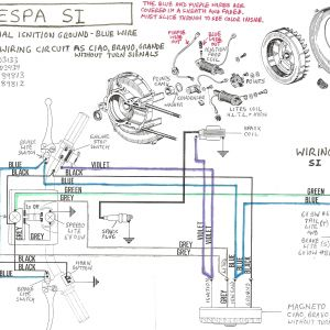 Pit Bike Wiring Diagram Electric Start - Famous Pit Bike Wiring Diagram Inspiration Best Images for Wiring Rh Oursweetbakeshop Info 20b