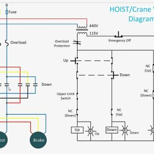 "Pittsburgh Electric Hoist Wiring Diagram - Inside Hoist Wiring""""sc"" 1""st"" ""wiring Diagram 2t"
