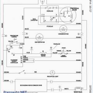 Refrigerator Wiring Diagram Pdf - Diagrams Whirlpool Refrigerator Wiring Diagram thoughtexpansion New 3g