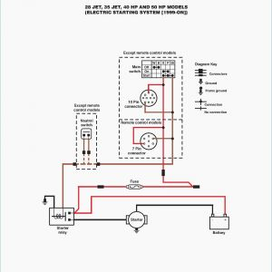 Rib2401d Wiring Diagram - Spst Relay Wiring Diagram Wellread 9f