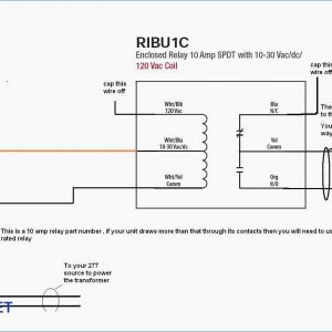 Ribu1c Wiring Diagram - Ribu1c Wiring Diagram Download Gallery Of Ribu1c Wiring Diagram 8 B Download Wiring Diagram 12b